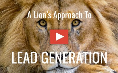 A lion's approach to LinkedIn